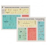 trigger point pain patterns wall chart travell